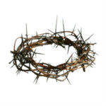 The Glory of Reproach - Weekly Blog Post by Dr. Craig Biehl - crown of thorns