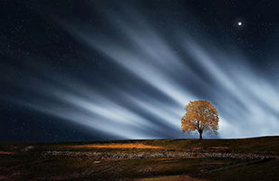 Light and the Age of the Earth: An Example of False Assumptions - Northern lights with planet and autumn tree against stark landscape