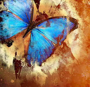 Gleanings from The Religious Affections (Part 22): Distinguishing Sign Seven: Gracious Affections Accompany a Change of Nature - Weekly Blog Post by Dr. Craig Biehl - blue butterfly